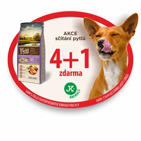 AKCE: SF 4+1 propsy