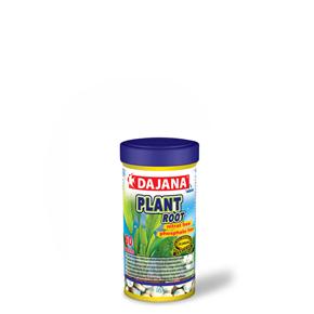 Dajana Plant Root 60ks