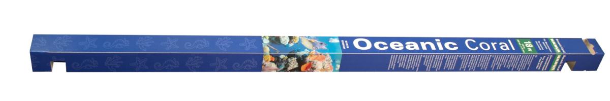 JK ANIMALS Narva Oceanic Coral Lt 38 | © copyright jk animals, všechna práva vyhrazena