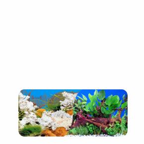 White Coral / Red Cloud, oboustranné akvarijní pozadí