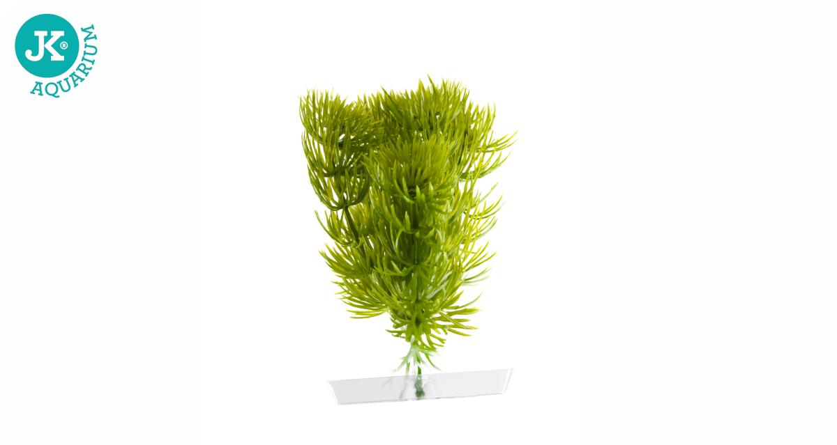 JK ANIMALS Akvarijní rostlinka Anacharis mini 13-16 cm | © copyright jk animals, všechna práva vyhrazena