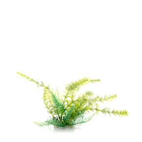 Cabomba zelená, akvarijní plastová rostlinka