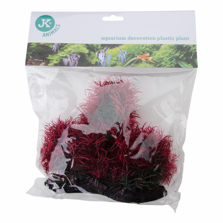 JK ANIMALS Akvarijní rostlinka Red Hygro 16 cm | © copyright jk animals, všechna práva vyhrazena