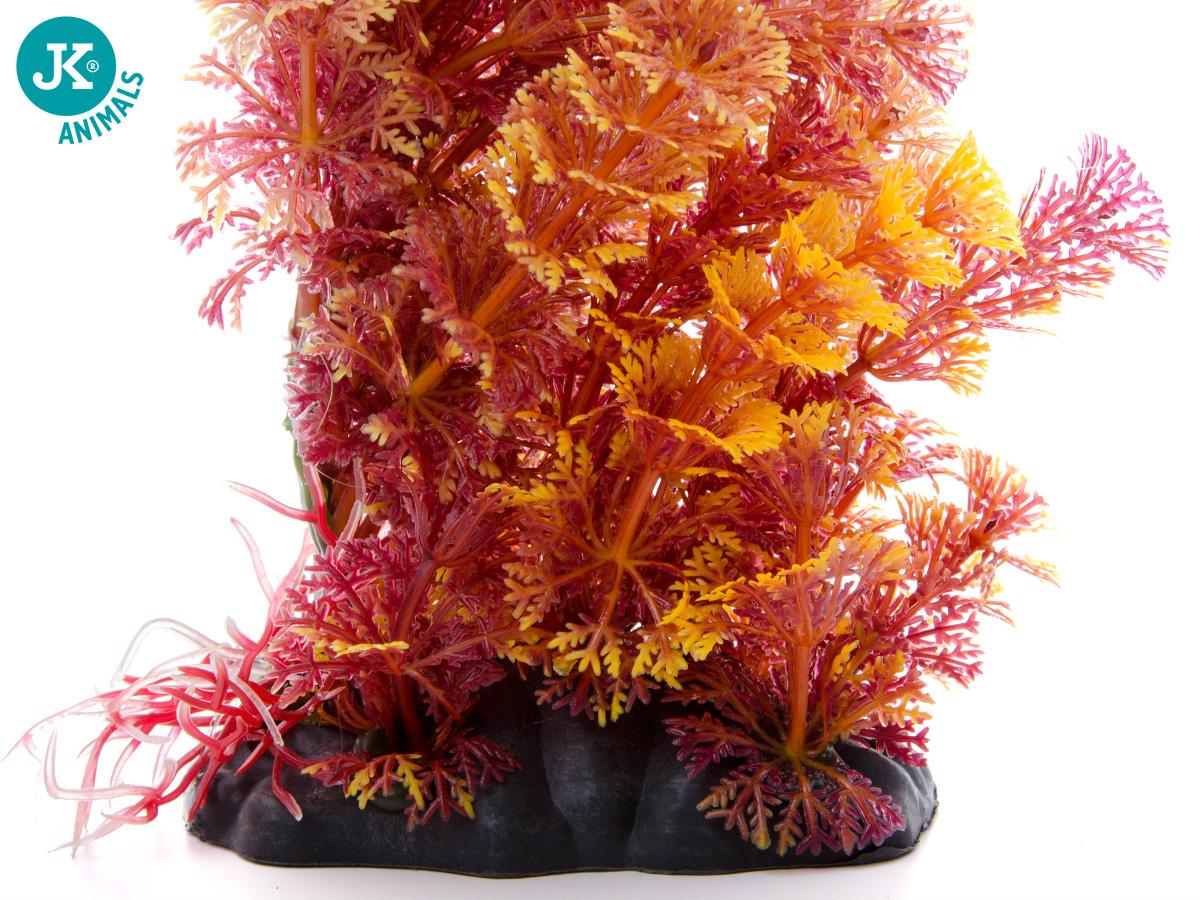 JK ANIMALS Akvarijní rostlinka Ambulia hnědá 15–20 cm | © copyright jk animals, všechna práva vyhrazena
