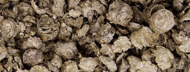 Dajana – COUNTRY MIX, Eco – litter soft 2kg, podestýlka pro hlodavce