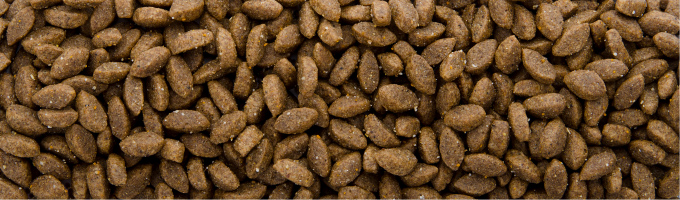 Sam's Field Cat Delicious Wild, superprémiové granule s divočinou – kompletní krmivo pro mlsné kočky
