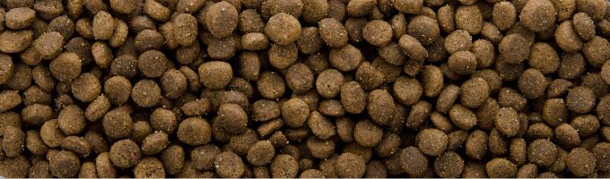 Sam's Field Cat Senior, superprémiové granule – kompletní krmivo pro kočičí seniory