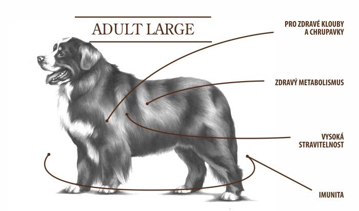 adult large tabulka