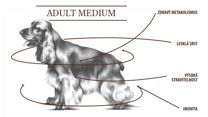 adult medium tabulka