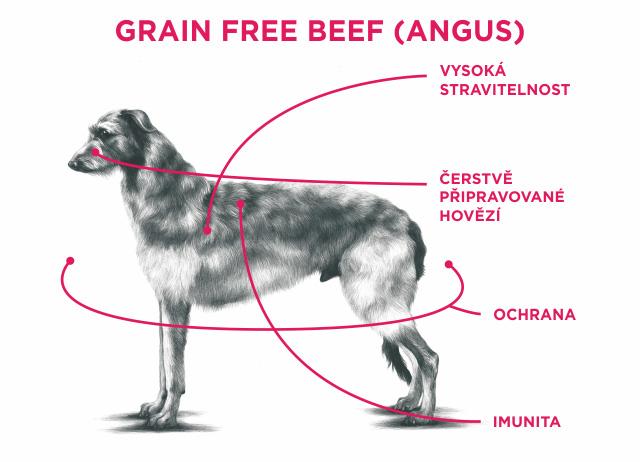 SAM'S FIELD GRAIN FREE BEEF (ANGUS)