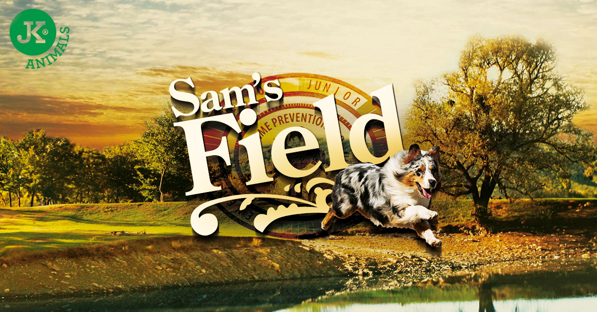 Sam's Field Junior Large Chicken & Potato | © copyright jk animals, všechna práva vyhrazena