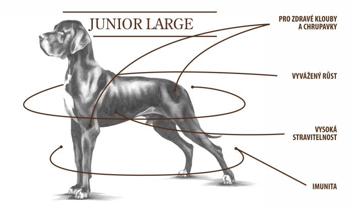 junior large tabulka