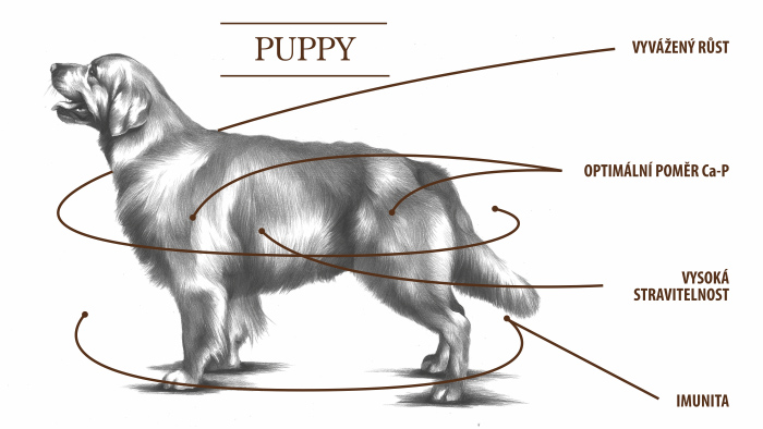 puppy tabulka
