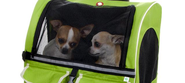 Batoh TRAVEL zelený