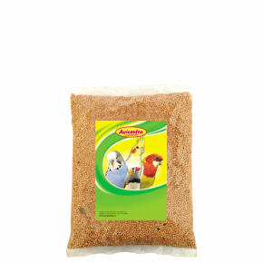 Avicentra – žluté proso