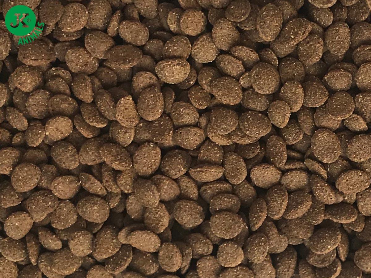 Dajana Turtle chips 1000ml vodní želva | © copyright jk animals, všechna práva vyhrazena