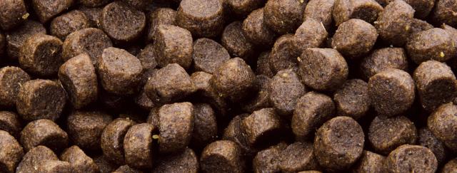 Dajana – COUNTRY MIX, Hedgie (ježek) 300g